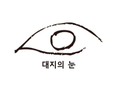 대지의 눈